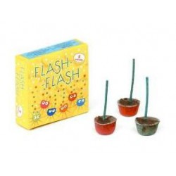 FLASH-FLASH