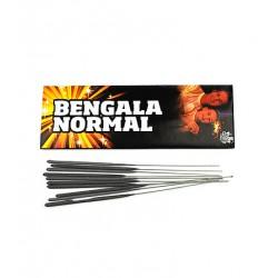 BENGALA NORMAL